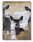 Three Deer Spiral Notebook