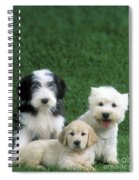 Three Diffferent Puppies Spiral Notebook