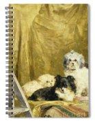 Three Dogs Spiral Notebook