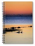 Three Ducks At Dawn Spiral Notebook