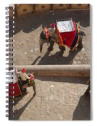 Three Elephants At Amber Fort Spiral Notebook