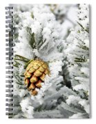 Three Frosty Cones Spiral Notebook