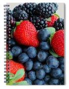 Three Fruit 2 - Strawberries - Blueberries - Blackberries Spiral Notebook