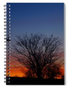 Three Geese At Sunset Spiral Notebook
