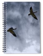 Three Geese Spiral Notebook