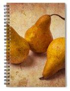 Three Golden Pears Spiral Notebook