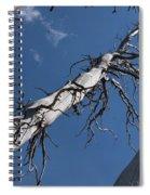 Three Gray Trees Spiral Notebook