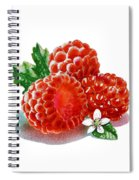 Three Happy Raspberries Spiral Notebook