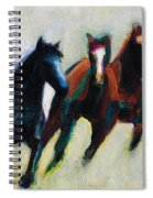 Three Horses On The Diagonal Spiral Notebook
