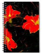 Three Lilies Spiral Notebook