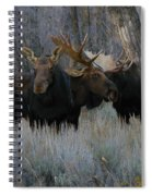 Three Moose In The Woods Spiral Notebook