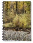 Three Moose Resting Spiral Notebook