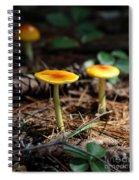 Three Orange Mushrooms Spiral Notebook