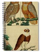 Three Owls Spiral Notebook