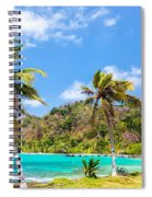 Three Palm Trees In Panama Spiral Notebook