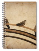 Three Pigeons Perched On A Metallic Arch. Spiral Notebook