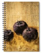 Three Plums Still Life Spiral Notebook