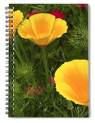 Three Poppies Spiral Notebook