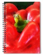 Three Red Peppers Spiral Notebook