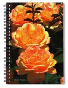 Four Rose At Mcc Spiral Notebook