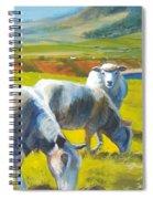 Three Sheep On A Devon Cliff Top Spiral Notebook