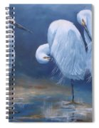 Three Snowy Egrets Spiral Notebook