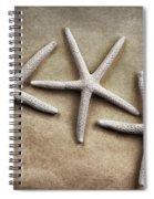 Three Starfish Spiral Notebook