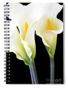 Three Tall Calla Lilies Spiral Notebook