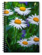 Three Tiers Of Beauty Spiral Notebook