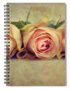 Three Times A Lady Spiral Notebook