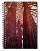 Three Trees Spiral Notebook