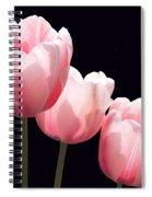 Three Two Lips Spiral Notebook