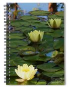 Three  Yellow Lilies Spiral Notebook