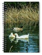 Three's A Crowd Spiral Notebook