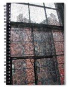 Through A Window Screen Spiral Notebook