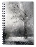 Through Glass -- A Tree In Winter Spiral Notebook