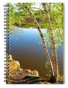 Through The Birch Spiral Notebook