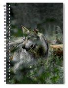 Through The Bushes Spiral Notebook