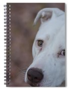 Through The Eyes Of A Pitbull  Spiral Notebook