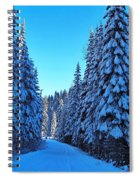 Through The Forest Spiral Notebook