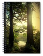 Through The Forest To The Lake Spiral Notebook