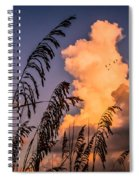 Through The Grass Spiral Notebook