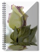 Through The Prism  A Rose Spiral Notebook