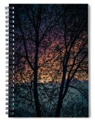 Through The Tree Spiral Notebook
