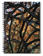 Through The Trees 2 Spiral Notebook