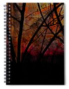 Through The Trees Spiral Notebook