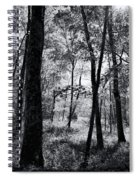 Through The Trees In Black And White Spiral Notebook