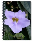 Thunbergia Spiral Notebook