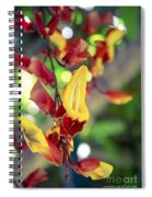 Thunbergia Mysorensis - Trumpetvine Spiral Notebook