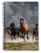 Thunder On The Plains Spiral Notebook